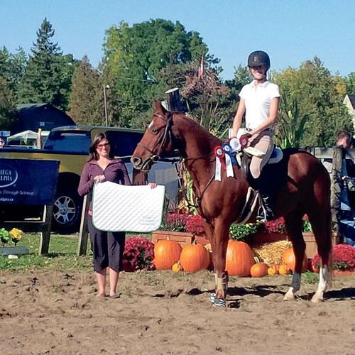 hunter-jumper show